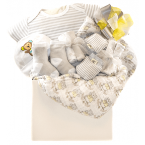 Baby Love Gift Basket