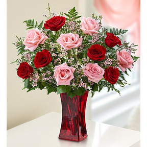 Shades of Pink and Red Premium Long Stem Roses (Medium)