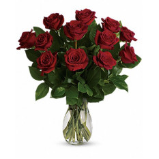 True Love Delight - Long Stem Red Roses (Standard)