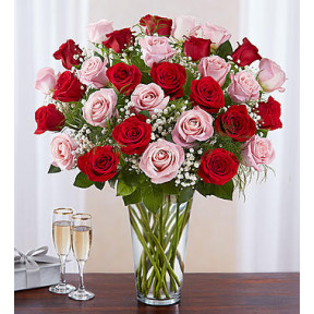 Ultimate Elegance Long Stem Pink & Red Roses (Medium)