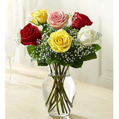 Loves Embrace Roses - Assorted