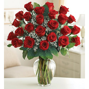 Ultimate Elegance Premium Long Stem Red Roses(24 roses)