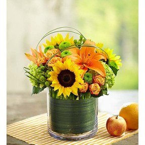Sunburst Bouquet (Medium)