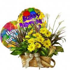 Group of cut flower and balloons for birthday
