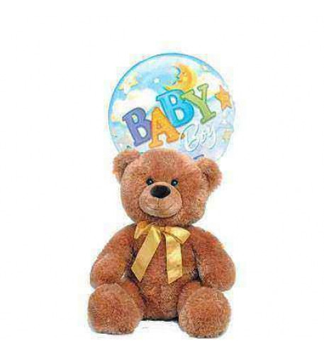 Teddy for Boy