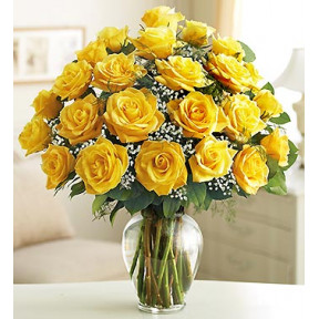 Ultimate Elegance Long Stem Yellow Roses (24 Stem Yellow Roses)