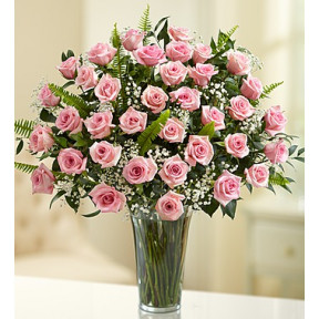 Ultimate Elegance Premium Long Stem Pink Roses - Pink (36 Steam)