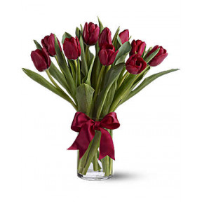 Radiantly Red Tulips (Standard)