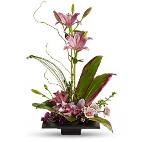 Imagination Blooms with Cymbidium Orchids (Deluxe)