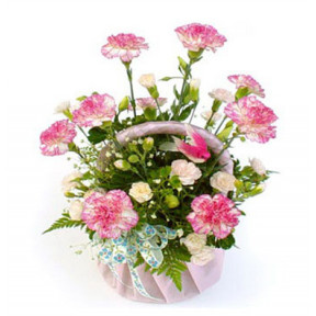 Basket Of 20 Pink Carnation
