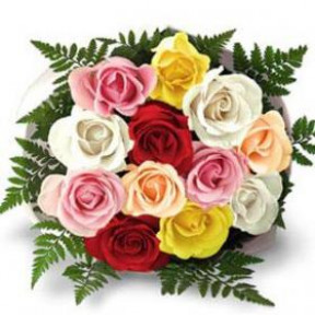 Bunch of 12 Mixed Roses