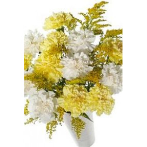 Vase with 12 Yellow and white Carnations