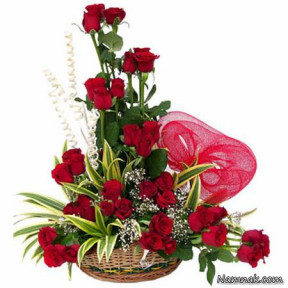 Arrangement Red 50 Roses