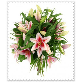 Bunch of 10 Pink Lilies
