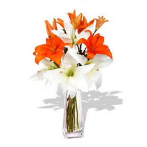 Vase with 10 Orange and White Lilies