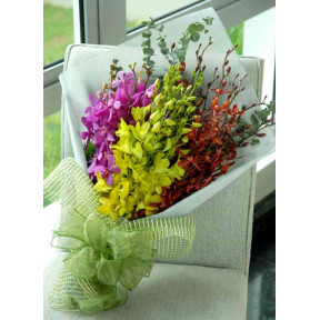 Bouquet of 12 Mixed Orchids