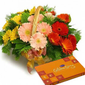 Basket of 15 Red, Yellow and Pink Gerberas with Small Cadbury Celebration Box.