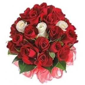 Bunch of 17 Red and 3 White Roses