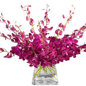 Amethyst Orchid Bouquet