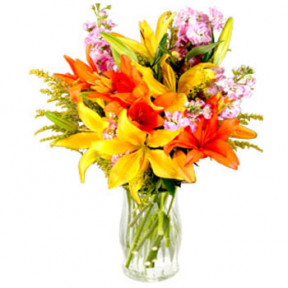 Assorted Lilies in Vase