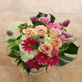 Assorted Pink Flowers