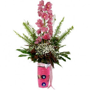 Pink Orchid Vase