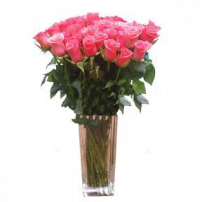 Pink roses (Small)