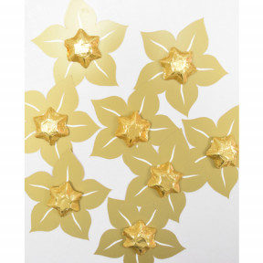50 Gold Star Party Favours