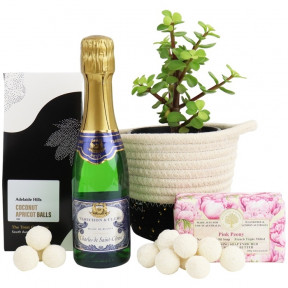 Money Tree Pamper Hamper