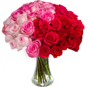 Bouquet Of 48 Gorgeous Roses In Vase