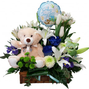 Newborn Baby Boy Flowers, Teddy Bear And Balloon