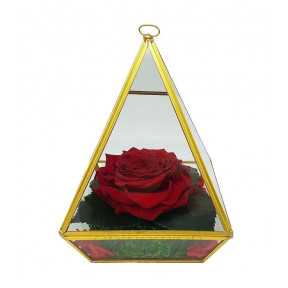 Forever Rose In A Pyramid Container (Xl Size)