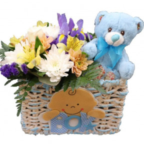Fresh Flowers For Newborn Baby Boy