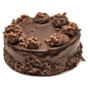 Chocolate Nutty Cake