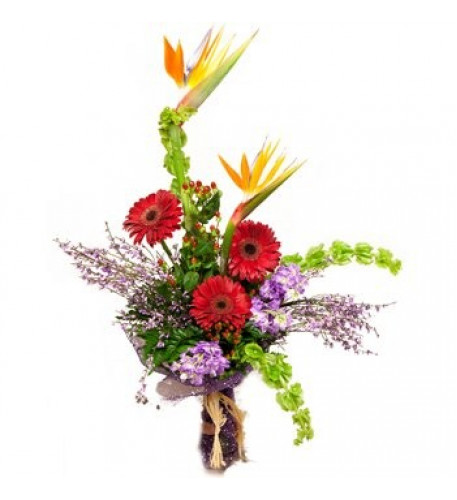 Paradise And Daisies Bouquet (Small)
