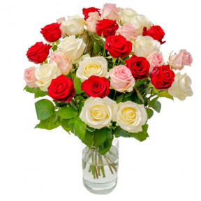 30 Mixed Roses Red / White / Pink