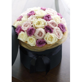 White and violet roses