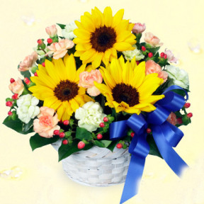 Sunflower and blue ribbon arrangement