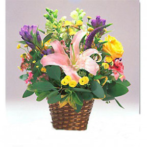 Flower Baskets-259