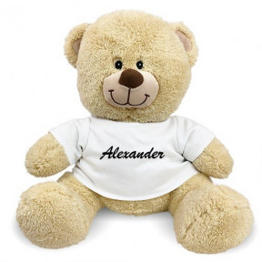 Personalized Any Name Teddy Bear (11 inch teddy)