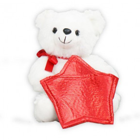 Bear Gift Card Holder (11 inch teddy)