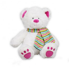 Pink Slopes Teddy Bear (11 inch teddy)