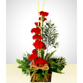 Insatiable: 12 Carnations in a Rustic Base