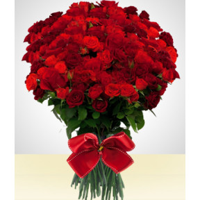 Luxury Bouquet of 200 Roses