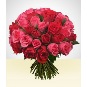 Perfect Pair: 36 roses Bouquet Pink and Red
