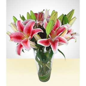 With Love: Pink Lilies