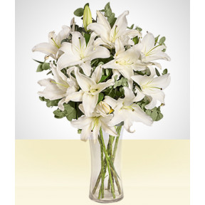 Tranquility: White Lily