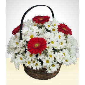 Tuned: Daisies and Gerberas in a Basket