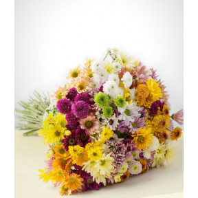 Forever: Colorful daisies Bouquet