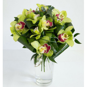 Green orchids - round bouquet (Medium)